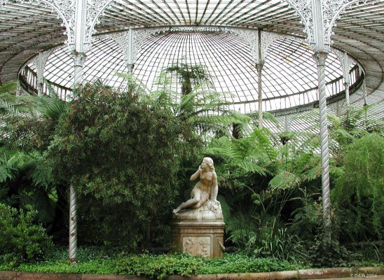 Inside The Kibble Palace, Glasgow Botanic Gardens